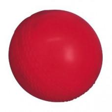GM Graeme Swann Trubounce Cricketball